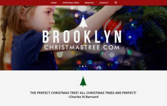 BrooklynChristmasTree.com